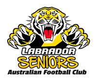 Labrador Seniors